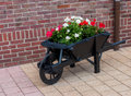 Wheelbarrow with flowers in netherlands there are plenty of different this is a nice ornament on the sidewalk Stock Photography