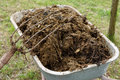 Wheelbarrow full of manure and pitchfork in garden Stock Image