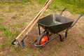 Wheelbarrow in a garden Royalty Free Stock Photo