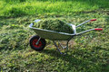 Wheelbarrow on a lawn with fresh grass Royalty Free Stock Photo