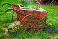 Wheelbarrow Planter Royalty Free Stock Photo