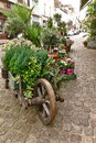 Wheelbarrow with plants display at old flower shop loaded and pretty on a cobblestone sidewalk in front of a french in a Stock Photography