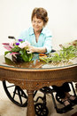 In Wheelchair Arranging Flowers Royalty Free Stock Image