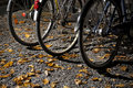 Wheels of bikes Stock Images