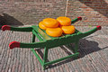 Wheels of dutch gouda cheese on traditional wooden barrow in amsterdam netherlands north holland Royalty Free Stock Photo
