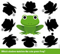 Which shadow matches the green cartoon frog