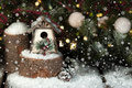 Whimsical christmas birdhouse a and rustic on snow covered pine tree stump evergreen branches and snowballs in background Stock Photography