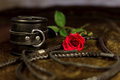 Whip, cuff and rose Royalty Free Stock Photo