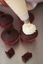Whipped cream being piped onto cupcakes chocolate Stock Image