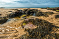 Whipsiderry beach Royalty Free Stock Photo