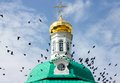 Whirl of a flock of birds at dome sergiev posad russia Royalty Free Stock Photography