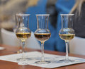 Whisky dram festival in kiev ukraine glasses for tasting closeup at corporate presentation of the glenlivet single malt scotch Royalty Free Stock Photography