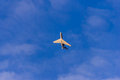 White airliner transports passengers in blue sky Royalty Free Stock Photo