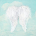White angel wings on textured sky background blue Royalty Free Stock Image