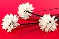White artificial flowers silk on a shiny pink background Stock Photography