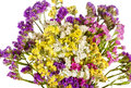 White background bouquet of colorful wildflowers Royalty Free Stock Photo