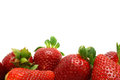 White background with strawberry edge photo for subsequent processing of text or images Stock Image