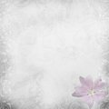 White beautiful wedding background Stock Images