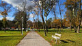 White bench in the park palic Stock Photography