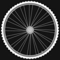 White Bike wheels isolated black background vector Royalty Free Stock Photo