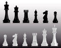 White and black chess pieces on a gray background Stock Image