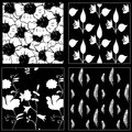 White&Black seamless pattern collection with flowers and feathers