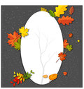 White blank on autumn background with maple leaves