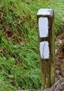 White Blazes on the Appalachian Trail Royalty Free Stock Photo