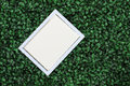 White border on turf is the artificial Royalty Free Stock Photography