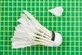 White broken shuttlecock on yellow racket net Royalty Free Stock Photo