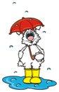 White bunny under an umbrella Royalty Free Stock Photo