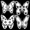 White butterflies on a black background Stock Photo