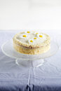White cake on a cake stand with daisy flowers and almonds Royalty Free Stock Photo