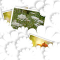 White card, summer country photos Royalty Free Stock Photo