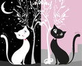 White cat on a black night sky, black cat day in the city, Royalty Free Stock Photo