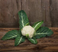 White cauliflower brassica oleracea l var botrytis l single whole with leaves on wooden background Stock Image