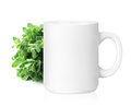 White ceramic mug with herbs herbs drink on a with clipping work path Royalty Free Stock Photos