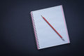 White checked copybook with red pencil on black background education concept Royalty Free Stock Photos