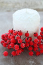White christmas candle and red berries xmas Stock Images