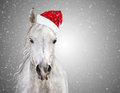 White christmas horse with santa hat on gray background snowfall Royalty Free Stock Images