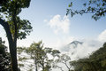 White cloud scenery in tropical jungle Stock Photos
