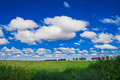 White clouds in the blue sky with green field Stock Photos