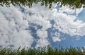 White clouds surrounded by luxuriant trees against a beautiful clear sky Royalty Free Stock Image