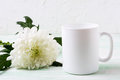 White coffee mug mockup with chrysanthemum Royalty Free Stock Photo