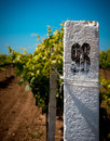 White column on a vineyard background of blue sky and the agriculture tinted Royalty Free Stock Image