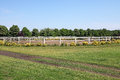 White corral fence and country road Royalty Free Stock Photo