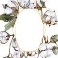 White cotton floral botanical flower. Watercolor background illustration set. Frame border ornament square.