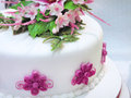 White cream cake with pink flowers and green leaves shot in south africa Royalty Free Stock Photos