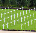 White crosses in a cemetery Stock Image