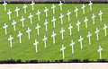 White crosses in a cemetery Royalty Free Stock Photo